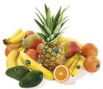 corbeille fruits.jpg